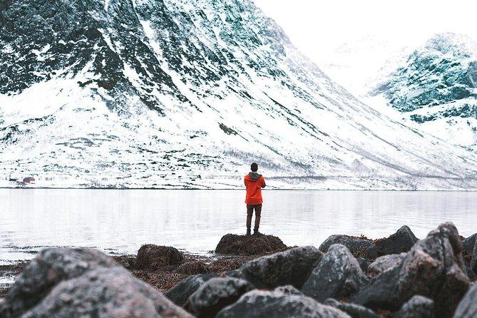 MÁS FOTOS, Arctic Fjord Sightseeing by Minibus