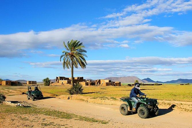 Marrakech Desert and Palm Grove Quad Bike Tour, Marrakech, cidade de Marrocos, MARROCOS