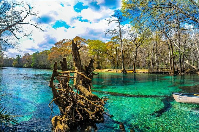 Just a short distance from Panama City Beach rests some of Northwest Florida's most beautiful cold springs. There is an abundance of things to see and do both above and below the crystal clear water as you kayak, snorkel, and explore this unique ecosystem with our informative and fun guides. The springs are natural, cave fed, and remain a cool 70 degrees year round with visibility exceeding 100 feet. Take a trip away from the beach and discover a great way to escape the summer heat with Coldwater Excursions.