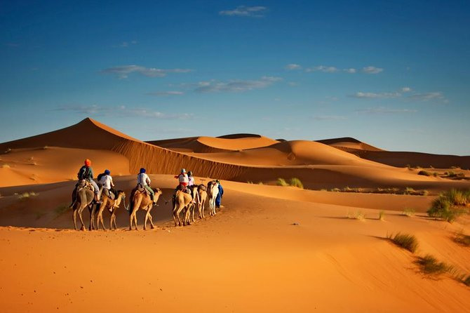 3 Days Tour From Agadir : Merzouga, Ouarzazate And Todgha Gorge, Agadir, Morocco
