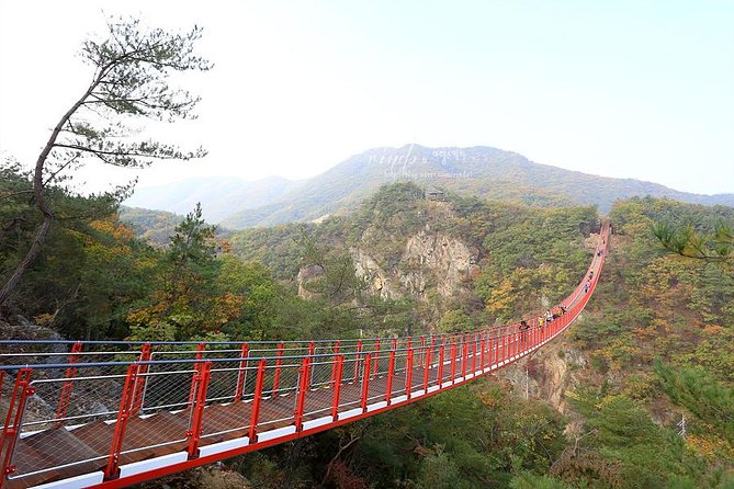 1. Private DMZ Tour :Visit Essential must-visit place of DMZ including 3rd invasion Tunnel with professional tour guide!<br><br>2. No Shopping! We care customers' satisfaction and their valuable time!<br><br>3. Visit Mt.Gamaksan Suspension Bridge and enjoy the full view at the top. (15 ~20 min walking to the up)