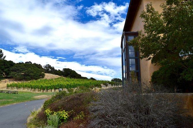Viticulture with Charm: Sonoma Valley Wine Tour from San Francisco, San Francisco, CA, ESTADOS UNIDOS