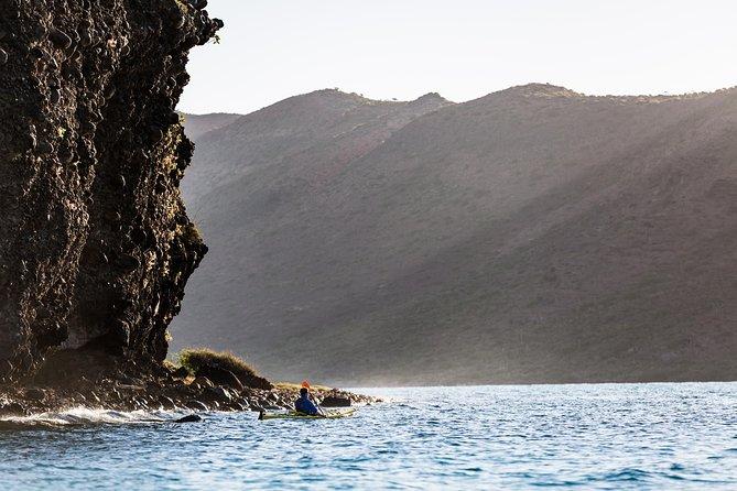 Kayaking in the Sea of Cortez, Todos Santos, MÉXICO