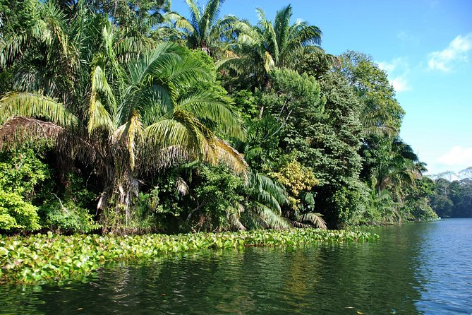 Excursión al Canal de Panamá e Isla Monos, Ciudad de Panama, PANAMA