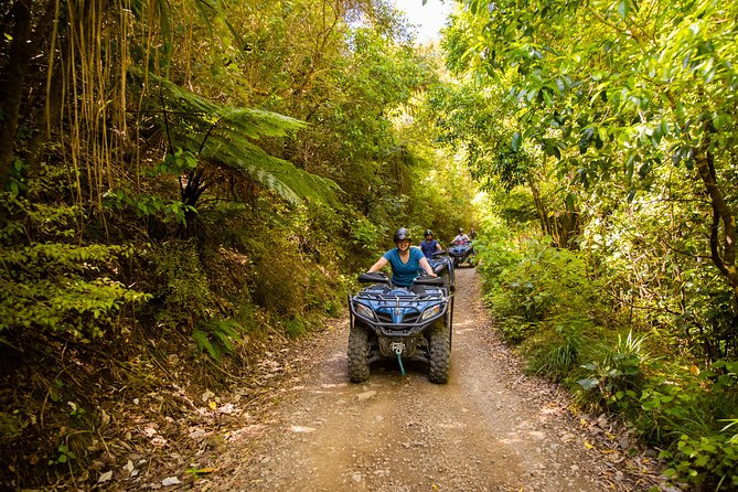 Designed to suit all abilities, this tour follows native forest trails, progressing through fields and along the banks of the river.