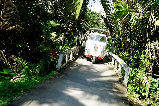 Mekong Delta My Tho and Ben Tre Luxury Private Tour 1 Day From Ho Chi Minh City, Ho Chi Minh, VIETNAM