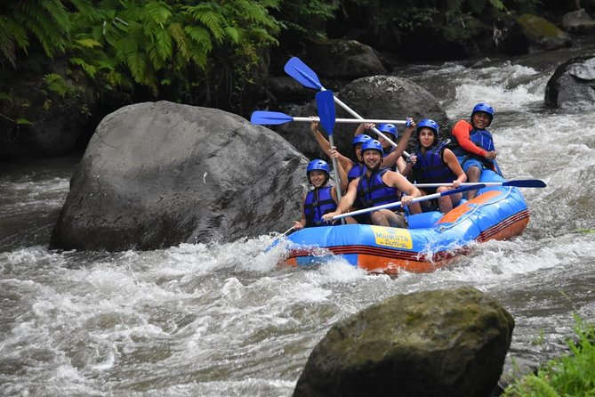 This is really amazing adventure during your travel in bali. Our rafting program provided you to explored all bali nature and see lot of beautiful things: forest, river, ricefields, rocks, etc.