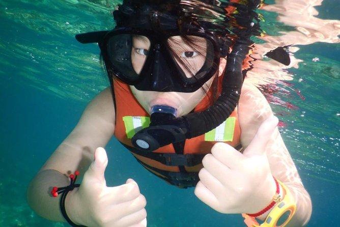 Hon Mun Island Half-Day Snorkeling Guided Tour from Nha Trang, Nha Trang, VIETNAM