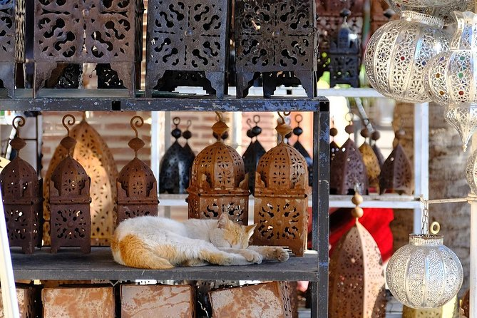 Fez Madina tour guide, Fez, Morocco