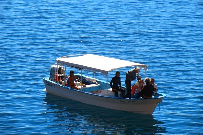 Espiritu Santo Island Expedition, ,