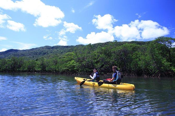 Iriomote Kayaking and Trekking Day Tour to Sangara Falls from Ishigaki, Ishigaki, JAPAN