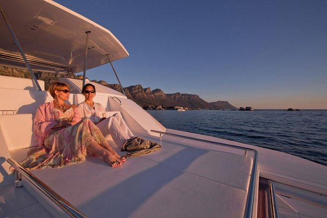 VipDolphins Luxury Whale Watching, ,