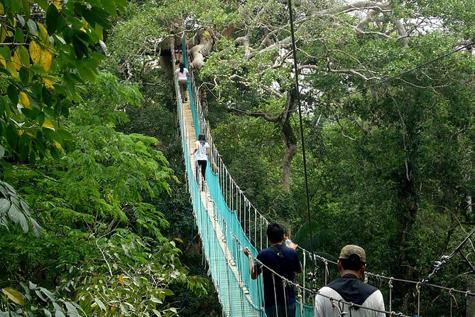 9 Day Private Tour Amazon Jungle And Machu Picchu, Puerto Maldonado, PERU