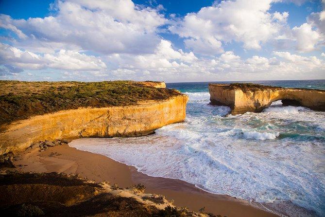 Excursión a la Gran Carretera Oceánica desde Melbourne, Melbourne, AUSTRALIA