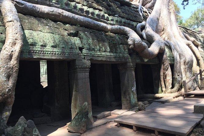Angkor Wat unique 5 main temples unique Tour, Siem Reap, CAMBOYA