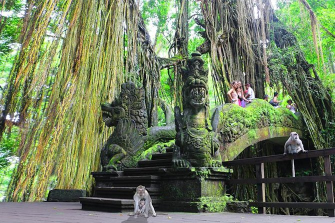 A perfect customizable Bali Land Transport with flexible English speaking tour driver.<br><br>The highest level of Quality and Safety, Reliable & Professional.<br><br>There are a lot of interesting & unique places to be explored in Bali.<br><br>Visit magical temples, Ubud art villages, Amazing rice terraces, beaches, sightseeing spots, Bali attraction spots or botanic gardens. Your driver will help you to prepare a great program for your outing.<br><br>By booking this package you will save a lot of money & efficient.<br><br>The package is effectively for 5 x ground transport arrangements with the following standard customizable itineraries:<br><br>1 x Air Port pick up & transfer to your hotel/ villa<br><br>2 x Full Day tours<br><br>1 x Half Day tour<br><br>1 x Hotel pick up and transfer to Bali Air Port or next destination<br><br>Vehicle 1500cc : Ertiga, Avanza or similar