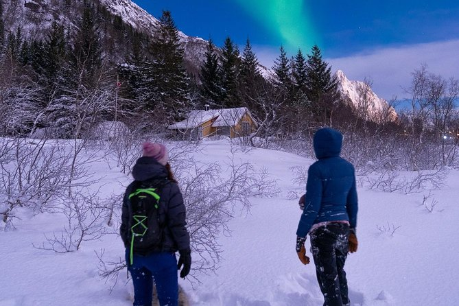 Snowshoeing by night while awaiting the Northern Lights is an unforgettable experience.<br><br>We will take you near Svolvær, away from the city lights, in an area surrounded by forests, mountains and fresh powdery snow.