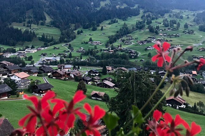 Jungfrau Region Grindelwald Mountain excursions, Grindelwald, SUIZA