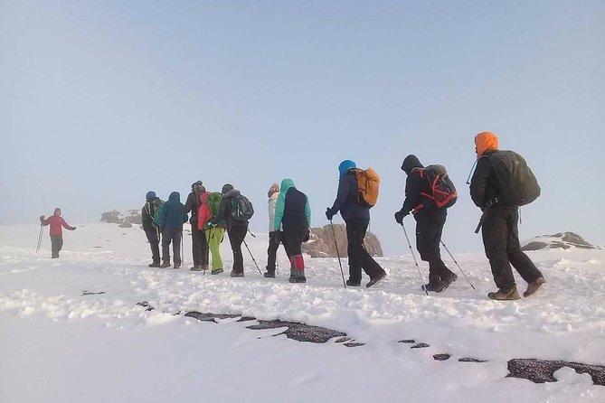 Climbing Kilimanjaro Machame Route 8 Days, ,