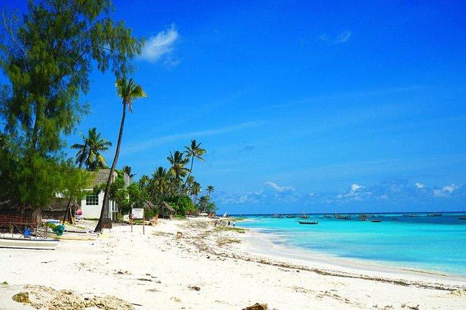 MÁS FOTOS, Nungwi Turtles and Cruise Excursion - Zanzibar