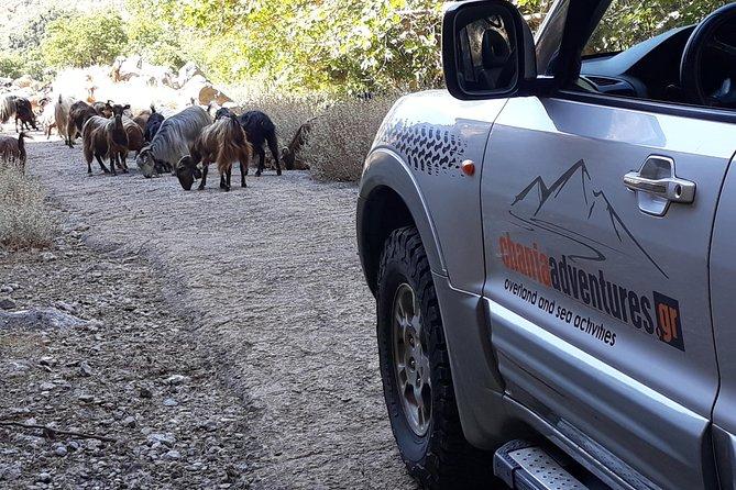 Luxury Jeep Safari - Private Tour, ,