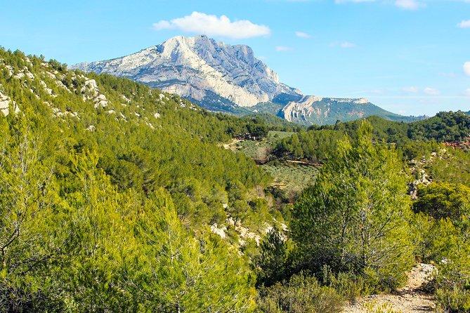 MÁS FOTOS, Aix-en-Provence, Cézanne, Mt Sainte Victoire & the Wine of Provence private tour