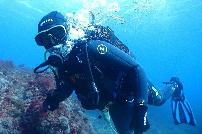 Sesimbra Dive Discovery, Distrito de Setúbal, PORTUGAL