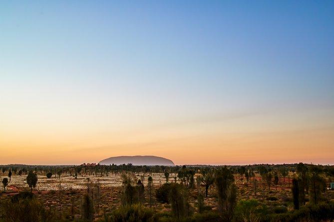 Uluru Field of Light Sunrise Tour, Ayers Rock, AUSTRALIA