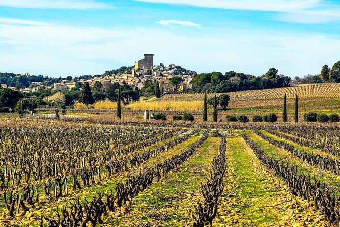 MÁS FOTOS, Wine tour of Châteauneuf du Pape, gastronomy, wines & joie de vivre private tour