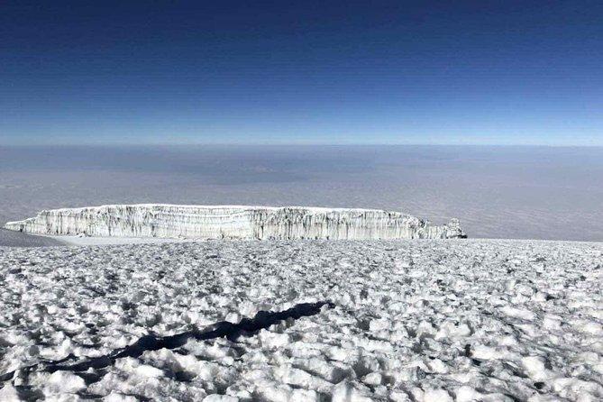 7 Days Kilimanjaro Lemosho Route Trek, Arusha, Tanzânia