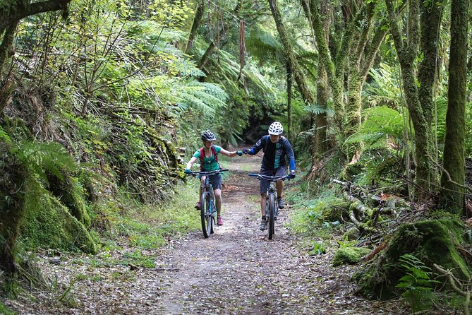 Enjoy an amazing wilderness mountain biking experience on New Zealand's best 2 day mountain bike trail. Enjoy genuine Kiwi hospitality and comfort at Timber Trail Lodge. We take care of everything. Suitable for people of reasonable fitness.