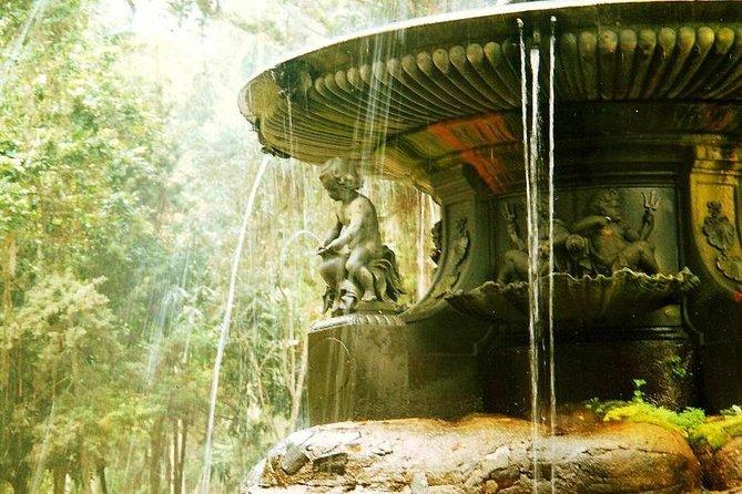 Botanical Garden Tour in Rio de Janeiro, Rio de Janeiro, BRAZIL