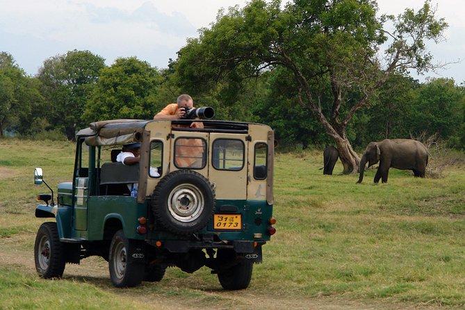 Udawalawe National Park Safari with Lahiru Prasad, ,