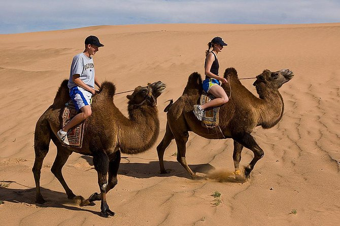 One of the best ways to experience and travel around Mongolia, if you are in a tight schedule. In this tour, you will see and experience Mongolian steppes, semi-Gobi, Bactrian camel, local nomadic culture, host family and traditional Mongolian food only in one day with a professional English speaking guide, driver and private vehicle.