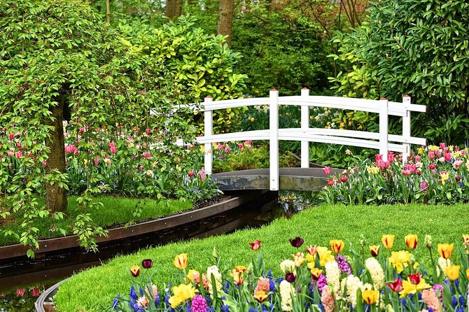 Private Keukenhof Gardens and Tulip Tour from Amsterdam Incl. Skip the Line, Amsterdam, HOLANDA