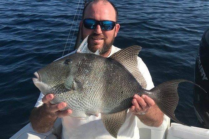 8-Hour Private Off-Shore Fishing Charter from Orange Beach, Gulf Shores, AL, ESTADOS UNIDOS