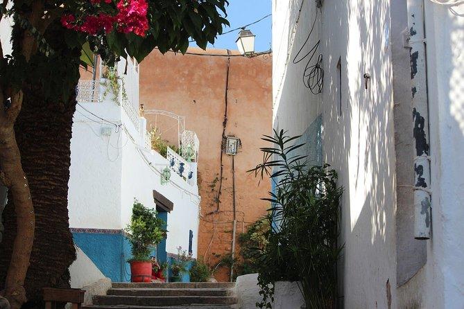 Tangier, Morocco: Vip Private Day Trip from Marbella, Malaga and Costa del Sol, Malaga, ESPAÑA
