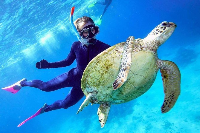 On this 8-hour tour from Cairns, cruise out to an activity platform on the outer Great Barrier Reef for a day of exploring this natural wonder in different ways. <br><br>Marine World's location is selected for its water clarity, coral quality, and diversity of marine life, which you can see while snorkeling or taking a tour by glass-bottom boat or semi-submersible vessel. <br><br>Learn about the wildlife from on-board marine biologists, and choose to participate in more activities, if you wish, like scuba diving or a helicopter ride (additional expense). All ages and swimming abilities are welcome. Buffet lunch is included as well as morning and afternoon tea.
