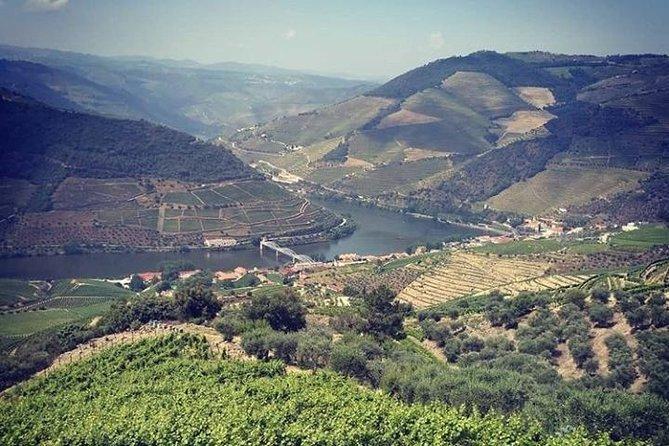 Excursão para grupos pequenos de tirar o fôlego pelas paisagens do Douro e degustação de vinhos, Oporto, PORTUGAL