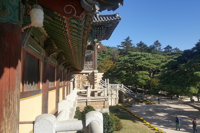 Make your way to Gyeongju, one of the most traditional cities in Korea, via a KTX express train that travels at a brisk 300 km per hour. Two hours ride will bring you to Singyeongju(New Gyeongju) station. Upon arrival, you explore with a day trip to the culture-filled city of Gyeongju. It was once the capital of the ancient Korean Kingdom of Silla (57 BCE – 935) for about one millennium and contains a great wealth of heritage sites and relics that reflect its remarkable cultural achievements.<br><br>With the assistance of our guides, catch a glimpse of some of the traditional art & culture, and experience them yourself to feel the rich history of Korea.