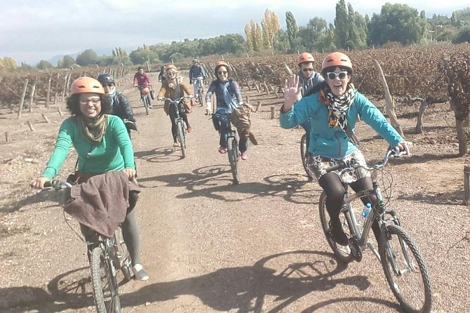 Bike Tour in Mendoza Wine Country, Mendoza, ARGENTINA