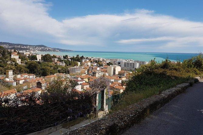 Recorrido en bicicleta eléctrica de medio día por el viñedo con cata de vinos desde Niza, Niza, FRANCIA
