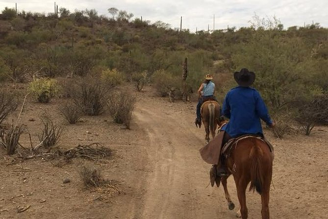 "Rancho Quest offers 3 unique Horseback excursion to fit any skill level. <br><br> ""Cascada De San Temo"" Departs from Rancho Quest by 4x4 vehichle to trail head . From there we'll begin our horseback ride toward the San Telmo Waterfall. Views of the Arroyo San Telmo, La Giganta and the natural beauty of Baja California Sur.<br><br>""Playa Salinita"" 1 hour of relaxing riding along the shores of the Sea of Cortez. As we ride the along the shore, views of the Loreto Bay National Marine Park Island. We occasionally may see marine life such as dolphins jumping in the waters.<br><br>""Exrema"" Departs from Rancho Quest to the Arroyo de San Telmo. It offers views of the Town, Airport, and Islands. Recommended for those who already have experience riding or for those looking an adventurous,, adrenaline filled excursion. Includes many inclines and declines<br>"