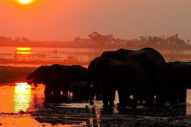 Chobe National Park Camping Safari From Victoria Falls (2 Days and 1 Night), Cataratas Victoria, ZIMBABUE
