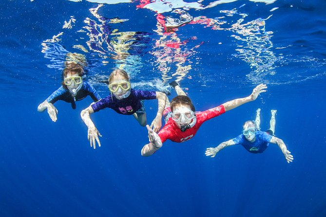 Snorkeling and Boat Tour in Crete, ,