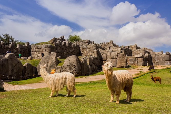 Best of Peru 6-Day Cusco, Machu Picchu, and Lake Titicaca Tour, Cusco, PERU
