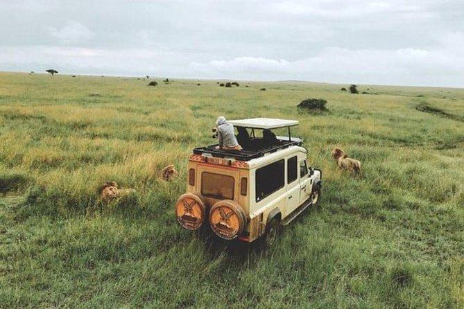 Selous Game Reserves safari- 4Days, Dar es Salaam, Tanzânia