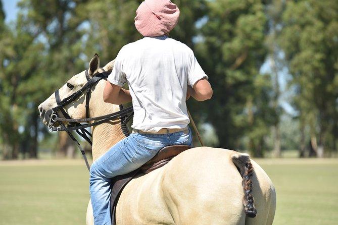 Conviértase en un jugador de polo: escapada de un día a Puesto Viejo Estancia, Buenos Aires, ARGENTINA