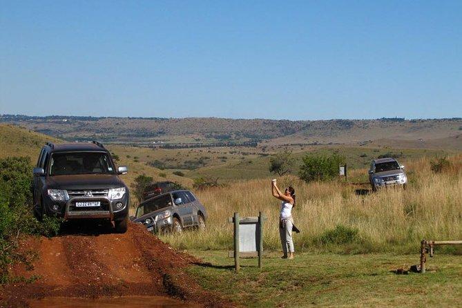 Rhino and Lion Park Guided Safari from Johannesburg or Pretoria, Johannesburgo, South Africa