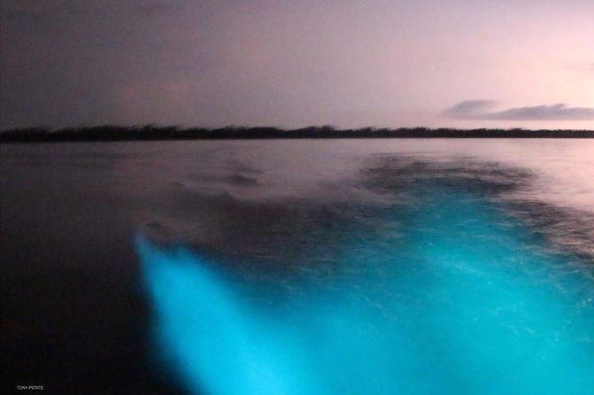 Bioluminiscente Tour At Night, Puerto Escondido, Mexico